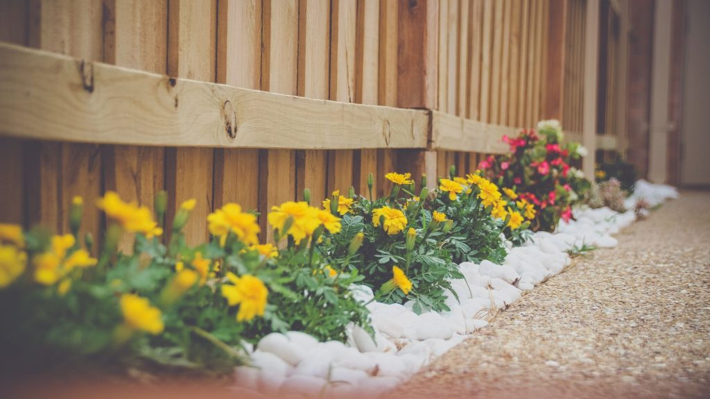 Save Money With Our Frugal Landscaping Ideas