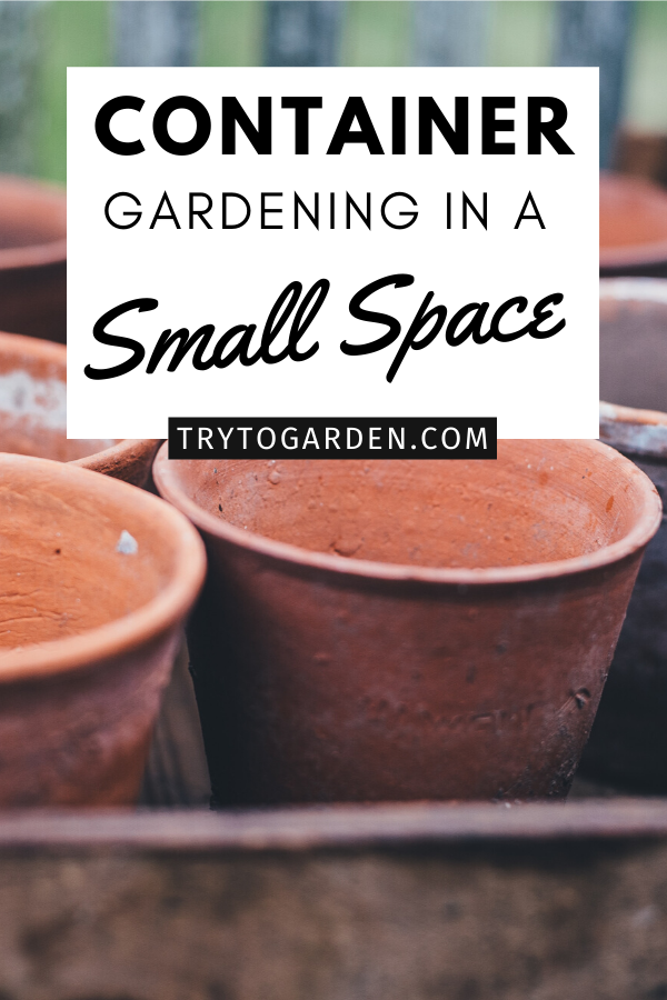 Container Gardening in a Small Space
