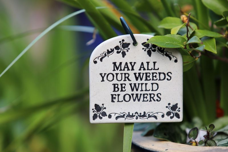 Easy Garden Maintenance Tips