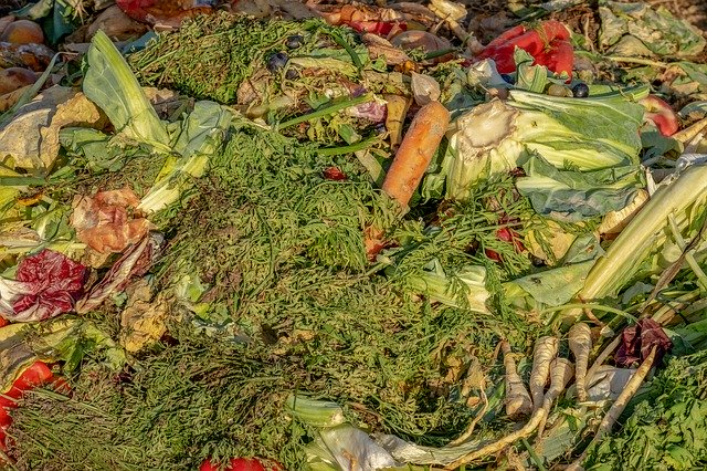 How to Make Effective Garden Compost