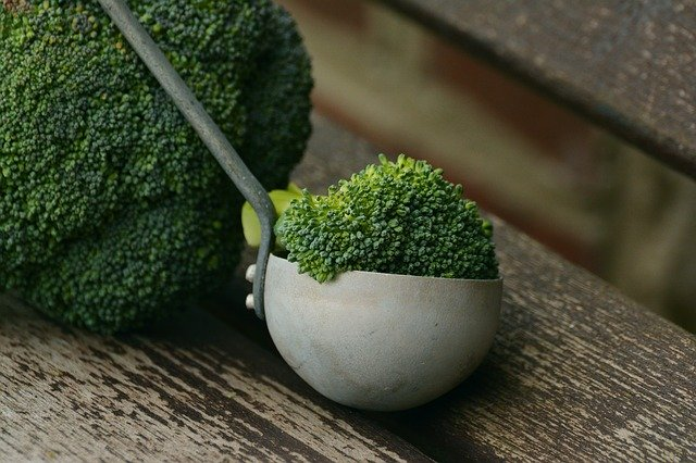 Growing Broccoli: a Guide for New Gardeners