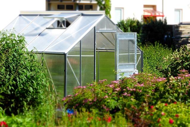 greenhouse gardener small personal greenhouse