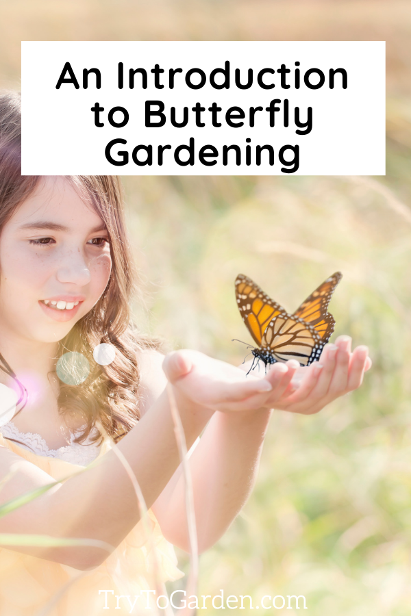 Best Starter Guide for Butterfly Gardening article cover image girl with butterfly