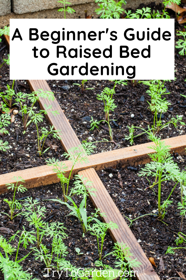 Maintaining a Raised Bed Garden article cover image with a raised garden bed done with square foot gardening