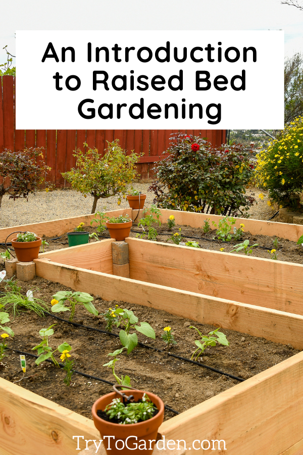 Maintaining a Raised Bed Garden introduction to raised bed gardening
