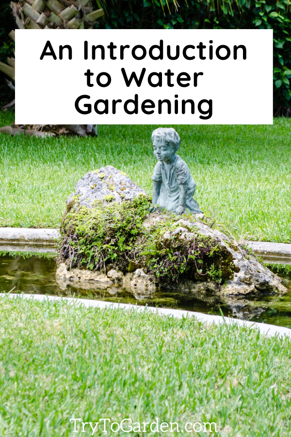 An Introduction to Water Gardening with statuary
