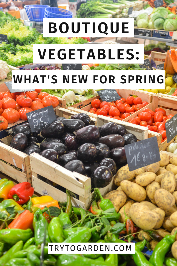 Boutique Vegetables: What's New For Spring farm market stand