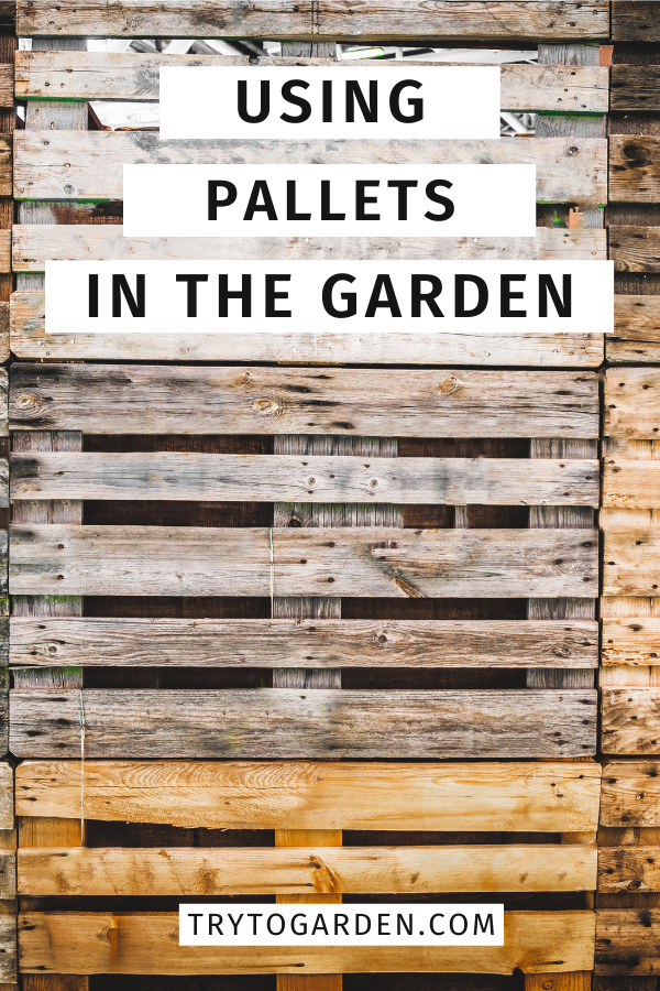 7 Ways for Using Pallets in the Garden article cover image of a stack of pallets