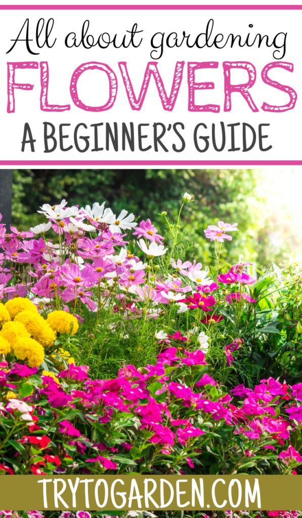 popular flowers for flower gardens