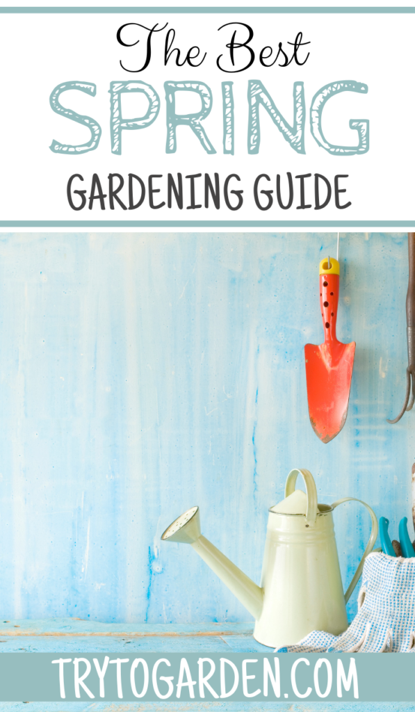 The Best Spring Gardening Guide article cover image