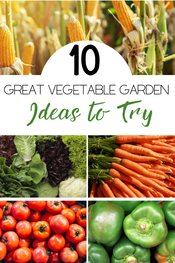 Ten Great Vegetable Garden Ideas article cover image with different veggies
