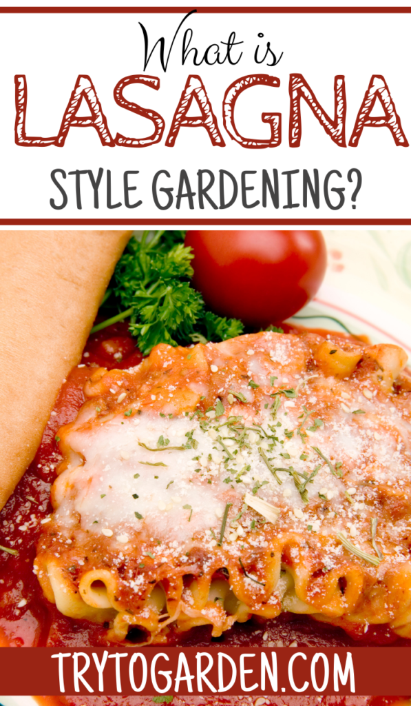 What is Meant by Lasagna Gardening article cover image with a picture of lasagna