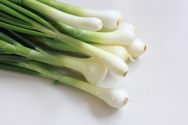 Gardening Tips for Bunching Onions That Actually Work!