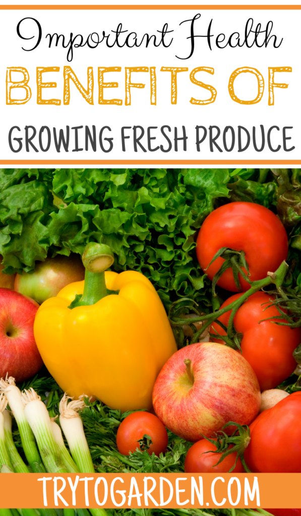 Important Health Benefits of Growing Fresh Produce