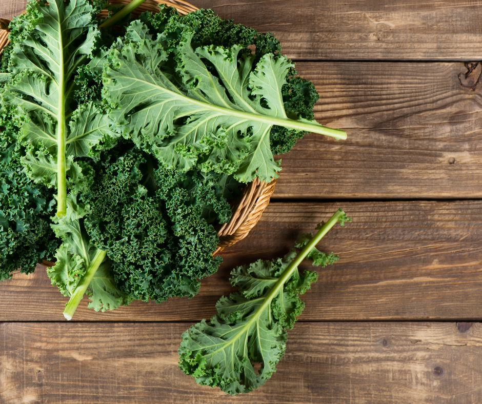 Gardening Tips for Kale That Really Work!