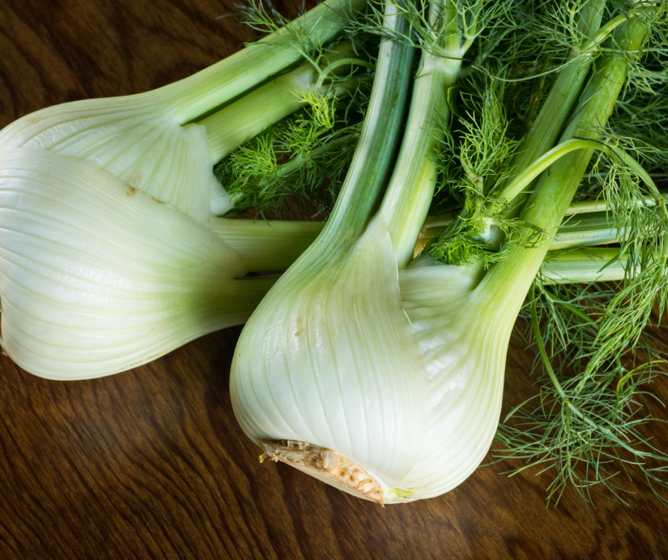 Gardening Tips for Fennel that Actually Work